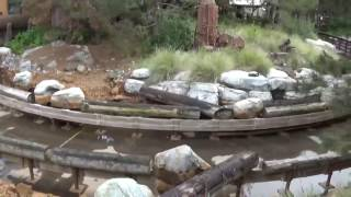 grizzly rapid construction at dca disneyland 2017