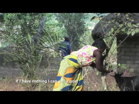 Animal Health Clubs in Sierra Leone