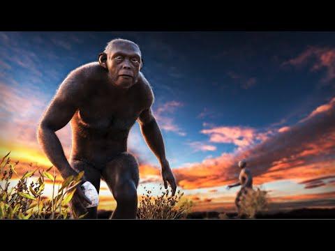 Human Origins -