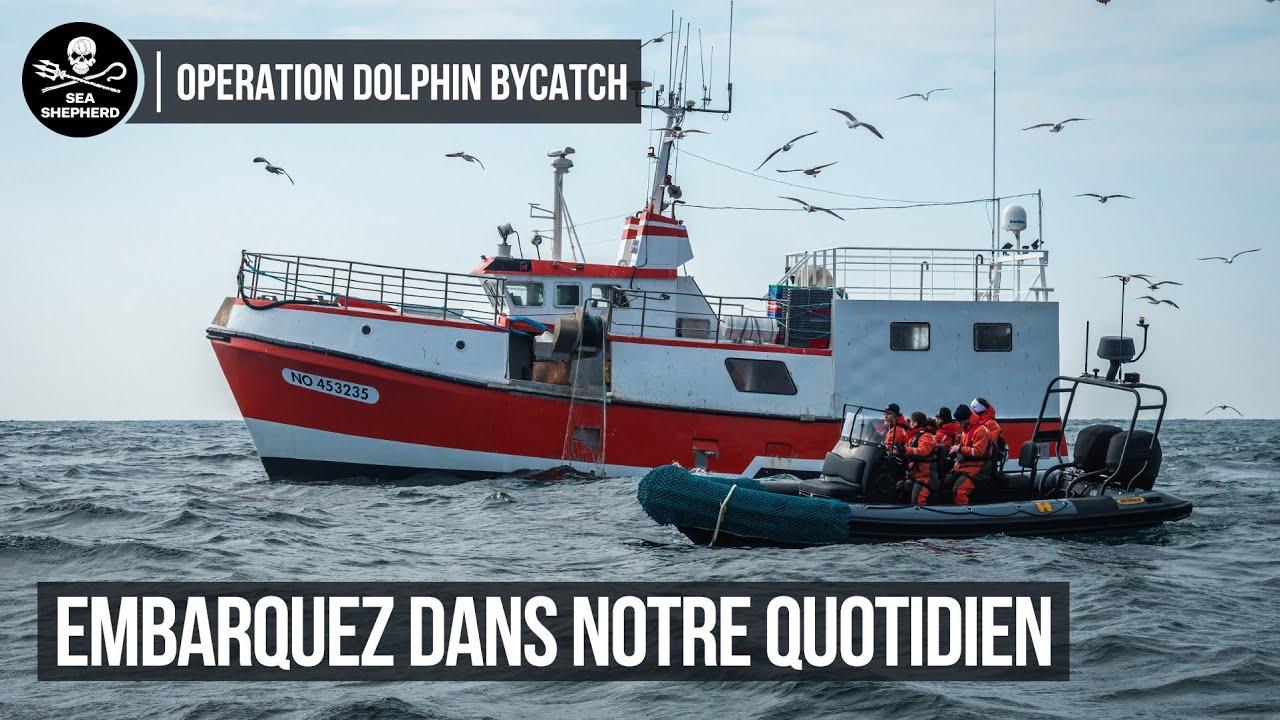 Opération Dolphin ByCatch : Embarquez à bord du Sam Simon !