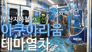 보는사람이 다 시원해지는 아쿠아리움 테마열차 탑승기!