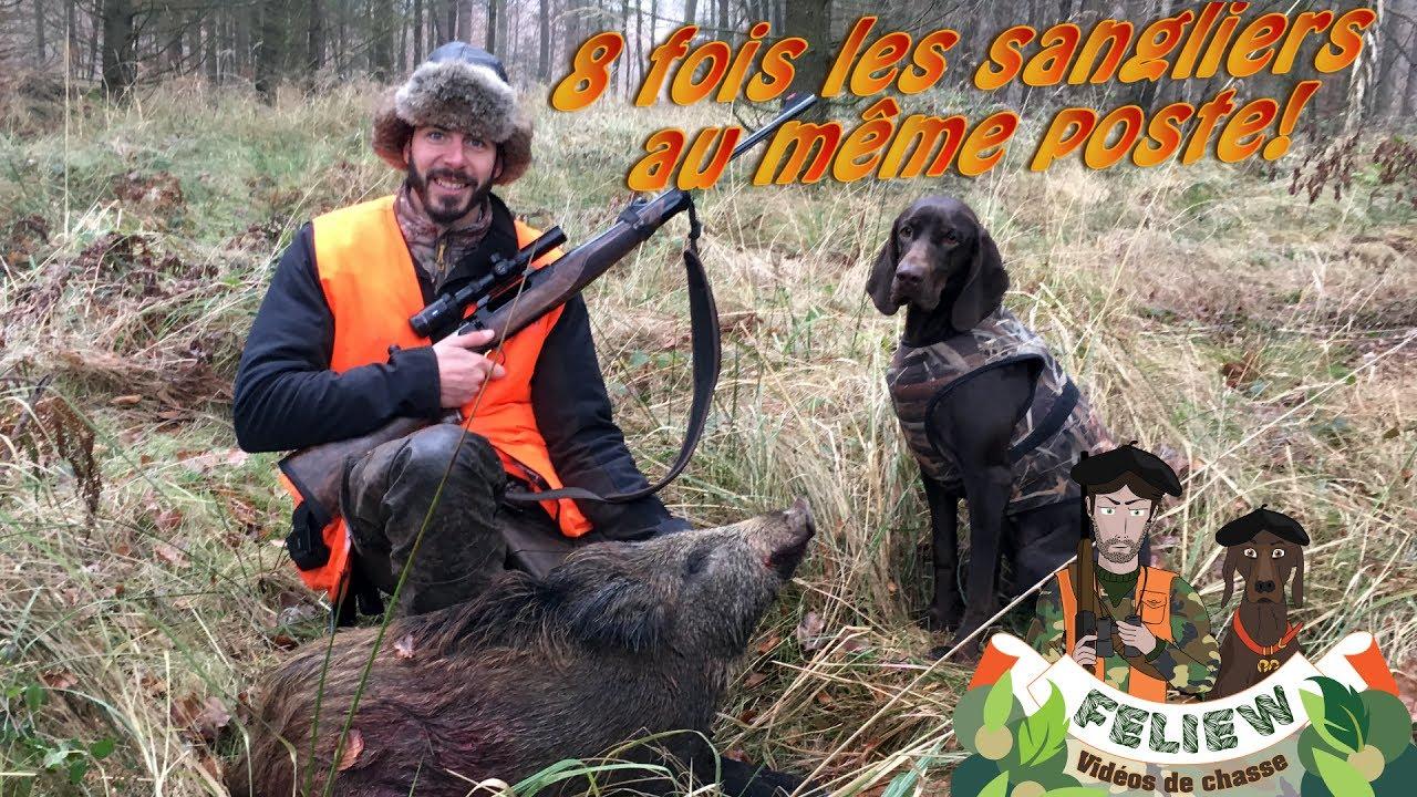 Download Deux très belles battues de chasse au sanglier, 8 fois les sangliers au même poste, Sauer 404