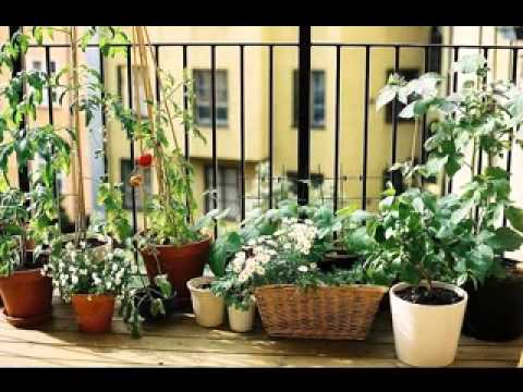Small balcony garden ideas - YouTube