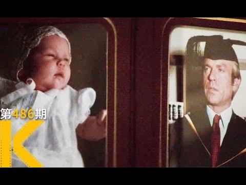 【看电影了没】32年悬案,孩子被野狗吃了?真实改编《暗夜哭声》
