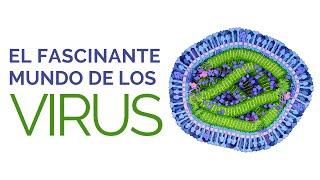 CIENCIA PARA LA GENTE: El Fascinante Mundo de los Virus - Ernesto Prieto Gratacós
