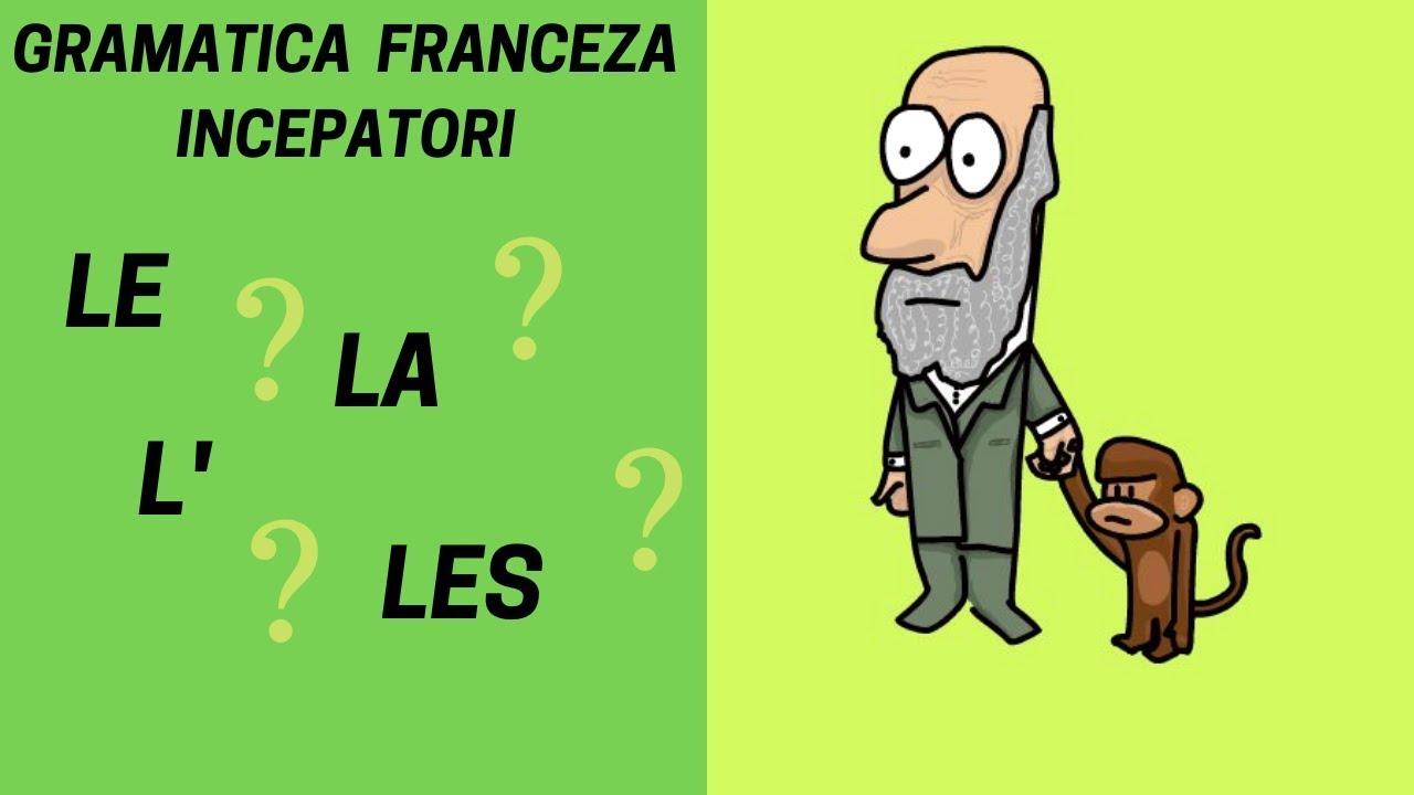 LE, LA, L' si LES / Articolul hotarat in franceza - Gramatica franceza pentru incepatori (2019)