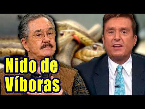 Pedro Sola NO AGUANTÓ y SE DESQUITÓ de Daniel Bisogno de Ventaneando
