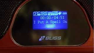 Bliss Sound PS 900 Red.