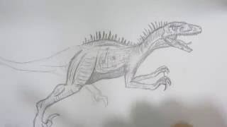 How to Draw Raptor from Jurassic Park.