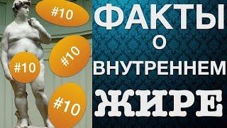 10 ФАКТОВ О ВИСЦЕРАЛЬНОМ ЖИРЕ!
