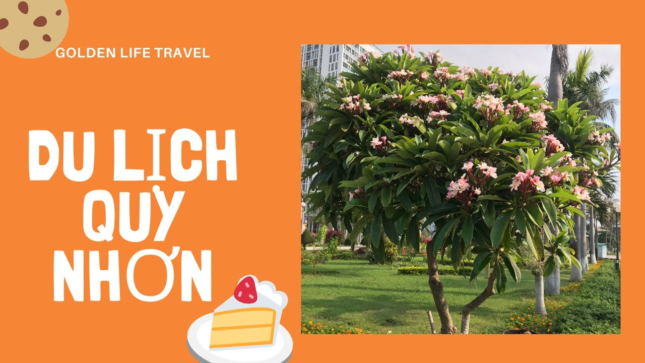 City Tour Quy Nhơn, Thành Phố bình yên | Golden Life Travel