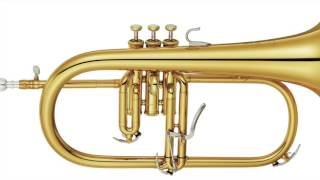Killing me softly with his song (Fugees) - Flugelhorn Cover by Martin Music