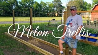 HD How to Build a Melon Trellis