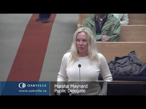 Council meeting of May 1, 2017