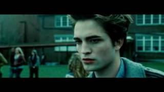 Не Гарри Поттер (Twilight/Harry Potter)