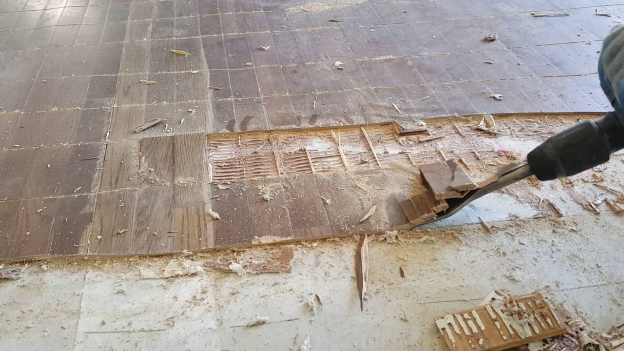 Glue down wood floor removal - YouTube