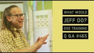 Training aggressive dogs | Stop dogs from jumping | What Would Jeff Do? Dog Training Q & A #465