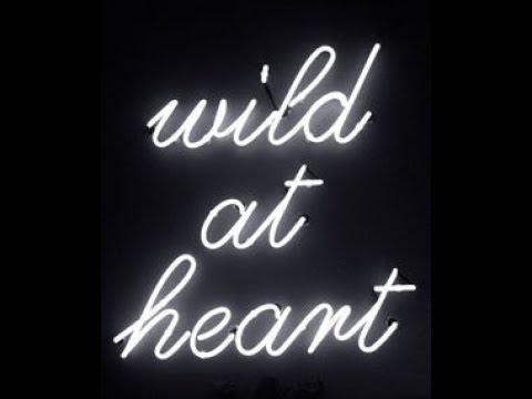 SAM BR 003: Wild at Heart by John Eldredge (4.8/5) Mp3