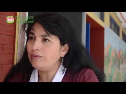 Intervenciones Florales en Escuela General Carlos Prats - Parte 1