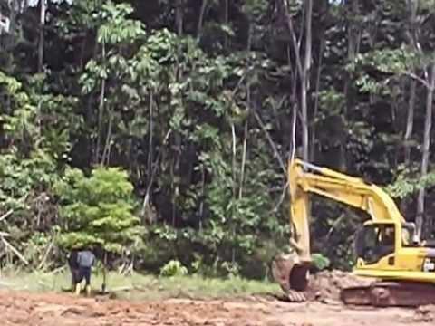 Explotando el Parque Nacional Yasuni
