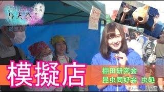 【模擬店】静大祭 in 静岡 2016 - 静岡大学