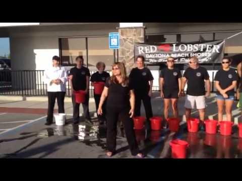 Daytona Beach Red Lobster Best 2017