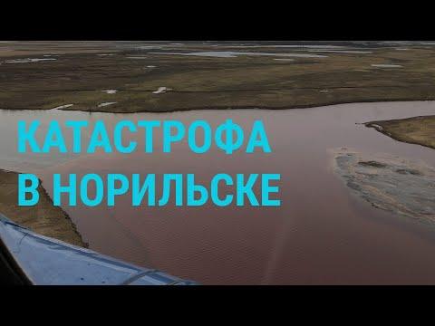 Экологическая катастрофа в России | ГЛАВНОЕ | 04.06.20