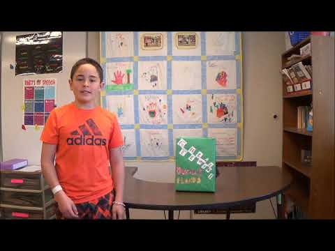 5th Grade Cereal (not Serial) Book Reports