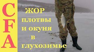 ЖОР плотвы и окуня в глухозимье. Зимняя рыбалка 2019 ч 1