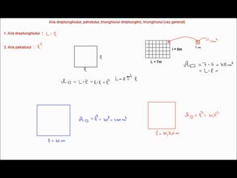 Aria dreptunghiului, aria patratului, aria triunghiului, aria triunghiului dreptunghic (6i31)