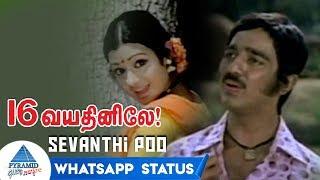 Sevanthi Poo Whatsapp Status   16 Vayathinile Tamil Movie Songs   Kamal Haasan   Sridevi   Ilayaraja