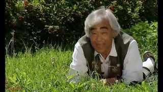 Takeo Ischi - New Bibi Hendl (Mei Bibihenderl) 1998