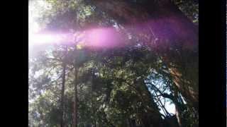 松尾泰伸【02MA RECORDS】http://02ma.com/の、ヒーリングピアノ「紫の...