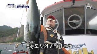입질 가뭄을 뚫은 노줄무 덕화의 방어 한 마리★ (feat. 골반 미남) thumbnail