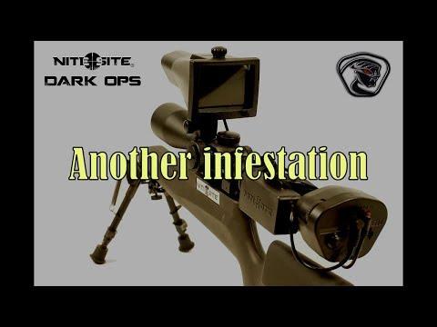 Ratting with the new NiteSite Dark Ops Viper & NiteSite Wolf RTEK