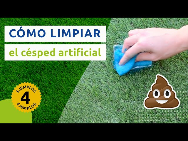 mantenimiento y limpieza del csped artificial tu manual