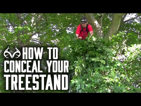 How To Conceal Treestands Youtube