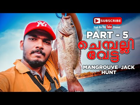 CHEMPALLI FISHING.HAMOUR FISHING. MANGROVE JACK FISHING. LURE FISHING. FISH ON