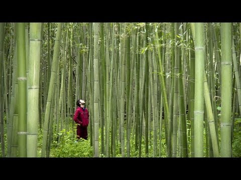 Japan by Bicycle (Complete Documentary)