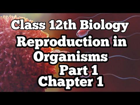 12th Class Biology - Chapter 1