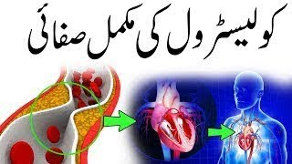 خبردار :- کلیسٹرول دل کے دورے سے بچاو