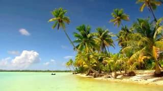 Остров Таити-Французская Полинезия.Тихий океан.FireFlies-это