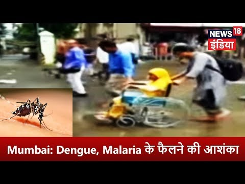 Breaking News - Mumbai: Dengue, Malaria के फैलने की आशंका - News18 India