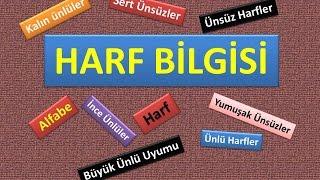 HARF BİLGİSİ - SES BİLGİSİ - TÜRKÇE - DİLBİLGİSİ