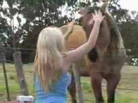hot girl with horse 1