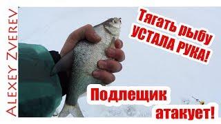 Подлещик бомбит! Ловля ЛЕЩА. Зимняя рыбалка.