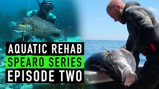 SPEARFISHING - Three Kings, Northland & The Hauraki Gulf - New Zealand
