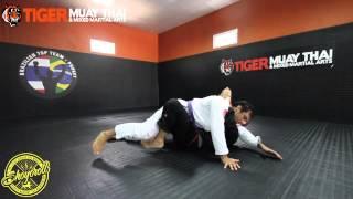 Fernando Maccachero - Technique Of The Week - Butterfly Guard Attacks