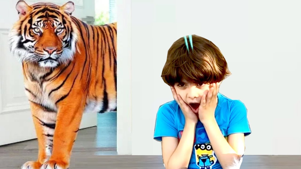 Kids Pretend Play Hide and Seek with Zoo Animals Outdoor | Learn Zoo Animals | Andrew Max Show