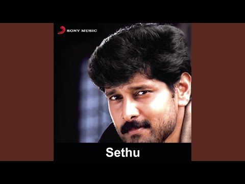 Sethu (Original Motion Picture Soundtrack)
